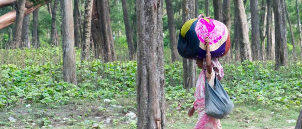 Rescue migrants